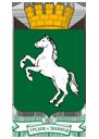 Логотип МО «Город Томск»